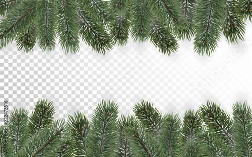 detailed christmas tree branches background on transparent background christmas decoration realistic fir tree border