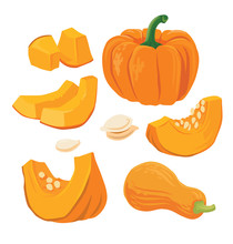 Autumn Orange Pumpkins