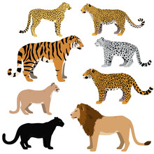 Cartoon Big Cats Vector Set.