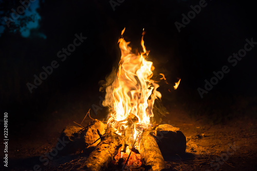 Foto Bonfire near water in forest at night