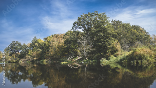 Keuken foto achterwand Bomen Trees on the shore of a beautiful autumn river.