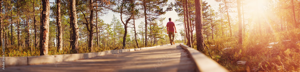 Fototapety, obrazy: Man walking on wooden walkway in nature. Human silhouette in the morning