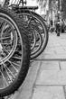 Bike wheels on a city street