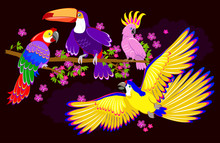 Fantasy Illustration Of Cute Fairyland Parrots On Dark Background. Modern Print. Vector Cartoon Image.