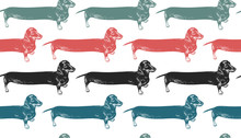 Dachshunds Long Dogs. Seamless Pattern.