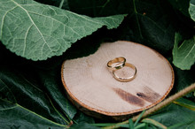 Gold Wedding Rings On Wooden With A Background Of Leaves