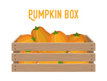 6133268 Vector Box With Pumpkins, Grocery Basket With Garden Products