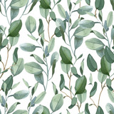 Seamless pattern of green eucalyptus leaves on white background - 222534992