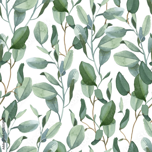 Tapeta zielona  seamless-pattern-of-green-eucalyptus-leaves-on-white-background