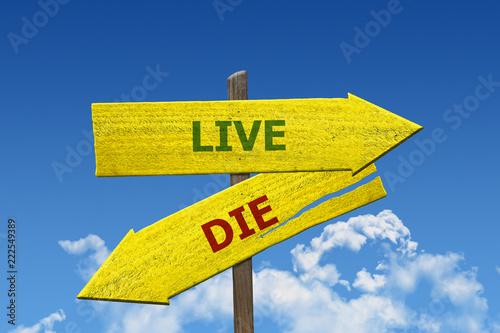 Fotografie, Obraz  Live or die sign survival concept