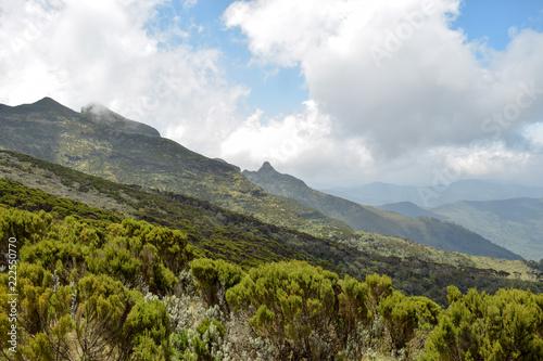 Fotobehang Wit The foggy landscapes of Elephant Hill, Aberdare Ranges, Kenya
