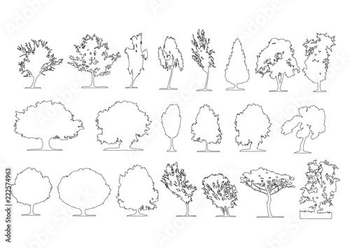 Set of side view graphics trees elements outline symbol for architecture and landscape design drawing. Vector illustration