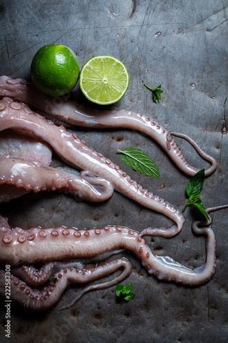 Preparing fresh octopus on cold metal table