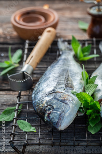Preparing whole sea bream with salt and herbs