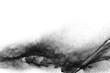 Black particles splattered on white background. Black powder dust splashing.