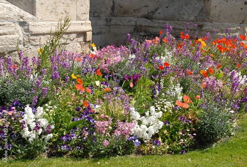 Valokuva  Massif de fleurs multicolores, ville de Vernon, département de l'Eure, Normandie