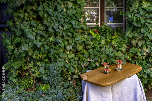 Fly agaric figures on a wooden tray in front of a green house wall and a window Canvas Print