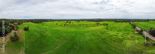 Poster Rijstvelden Drone shot panorama Aerial view landscape scenic of rural agriculture rice field