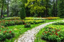 St. Petersburg. City Park On Y...