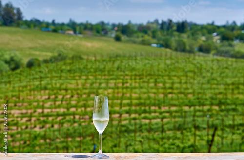 Staande foto Verenigde Staten Glass of white wine and vineyards