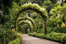 Singapore, Botanic Garden, Arc...