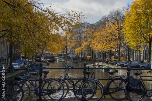 Fototapeta Autumnal canal scene Amsterdam obraz na płótnie
