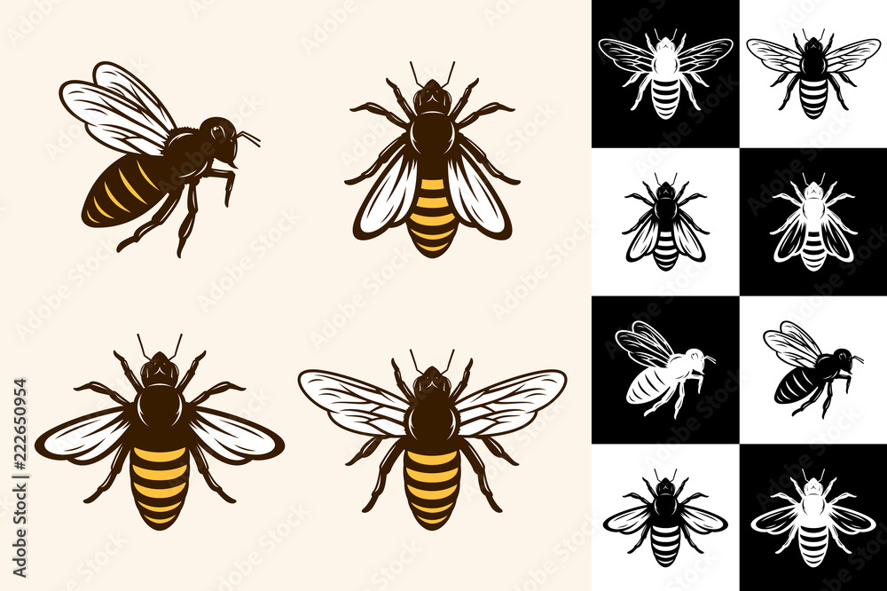Fototapety, obrazy: Vector bee icons