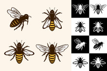 Vector Bee Icons