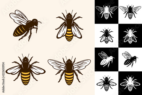 Vector bee icons Canvas Print