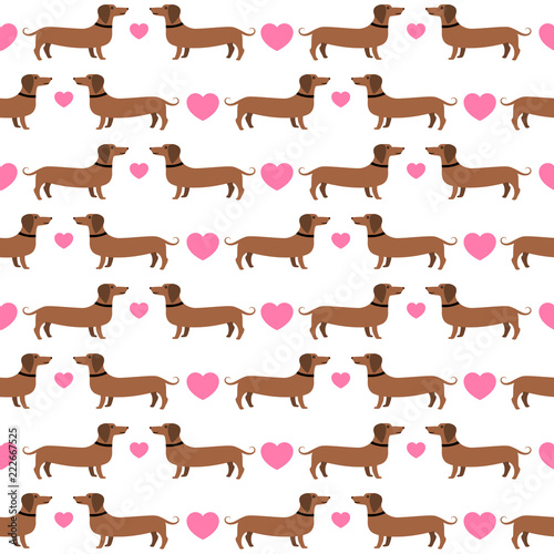 plakat Dachshunds with hearts seamless pattern, vector background