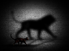 3D Cat Walking With Lion Shaped Shadow Against A Brick Wall