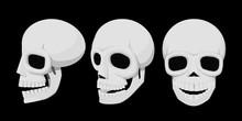 Isolate Skull On Transparent B...