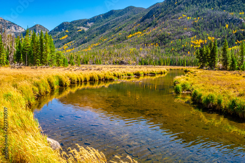 Keuken foto achterwand Honing Beautiful Fall Hike in Aspens in Grand Lake, Colorado