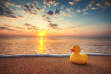 Yellow Rubber Duck Toy On The Beach During Beautiful Sea Sunrise