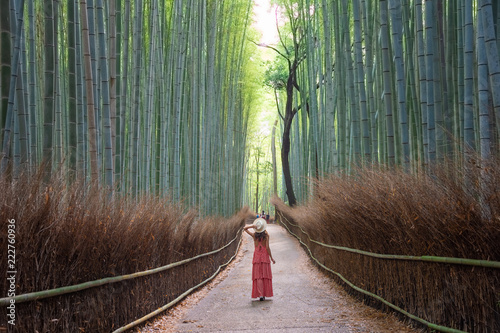 Montage in der Fensternische Khaki Woman walking in Bamboo forest, Arashiyama, Japan