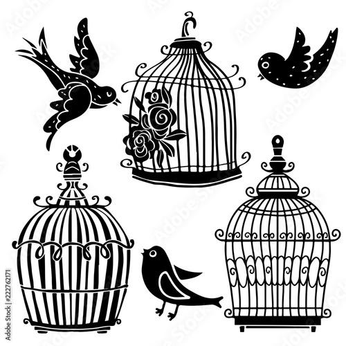 Fotografie, Tablou Birds and cages