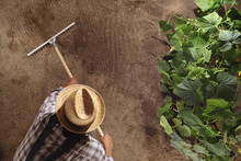 Man Farmer Working With Rake I...