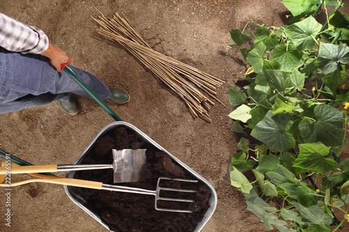 Obraz na plátne man farmer working in vegetable garden, wheelbarrow  full of fertilizer with spa