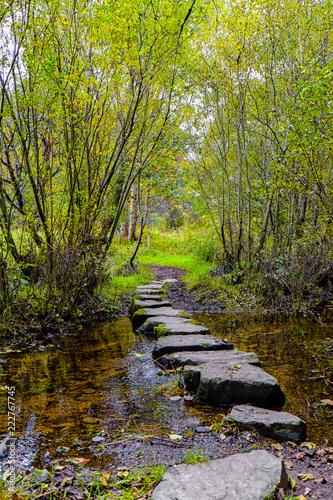 Fotografie, Obraz  Newtonmore stepping stones