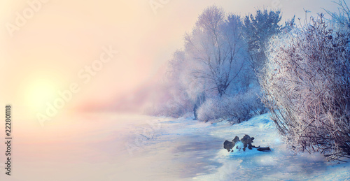 Poster Rose clair / pale Beautiful winter landscape scene background with snow covered trees and iced river. Beauty sunny winter backdrop. Wonderland. Frosty trees in snowy forest