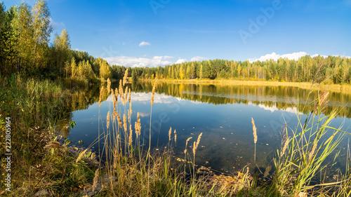 Fotografie, Obraz  осенний пейзаж на озере с березовым лесом на берегу, Россия, Урал, сентябрь