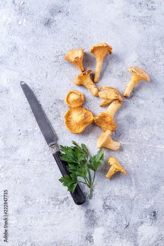 Fototapeta Chanterelle Mushrooms on a Stone Board obraz na płótnie