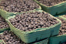 Closeup Of A Cardboard Full Of Fresh Organic Blueberries Fruits At A Pubic Market