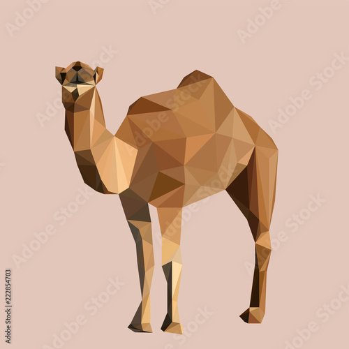 Colorful polygonal style design of wild camel in yellow colors Fototapeta