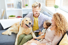 Young Couple And Their Cute Daughter Playing With Their Friendly Purebred Golden Labrador At Leisure