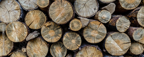 Fotobehang Brandhout textuur Chopped wood straightened in row. Wooden logs for heating. Wall made of cut logs. Fuel for fireplace and stove. Natural wooden texture. Stock of logs for winter heating. Rustic rural scene.