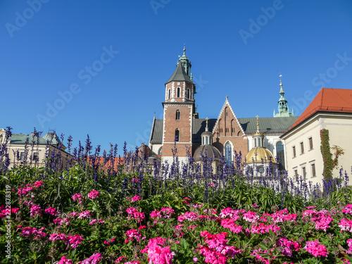 Tuinposter Historisch geb. Wawel Cathedral in Krakow