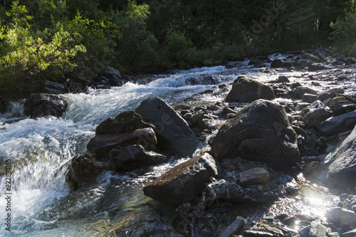 Staande foto Rivier A small river in the Altai Mountains