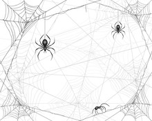 Halloween Background With Spid...