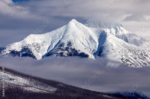 Fotografia, Obraz  Mountain peak and fog in winter, Glacier National Park, Montana